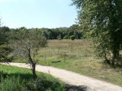 panorama 3.jpg